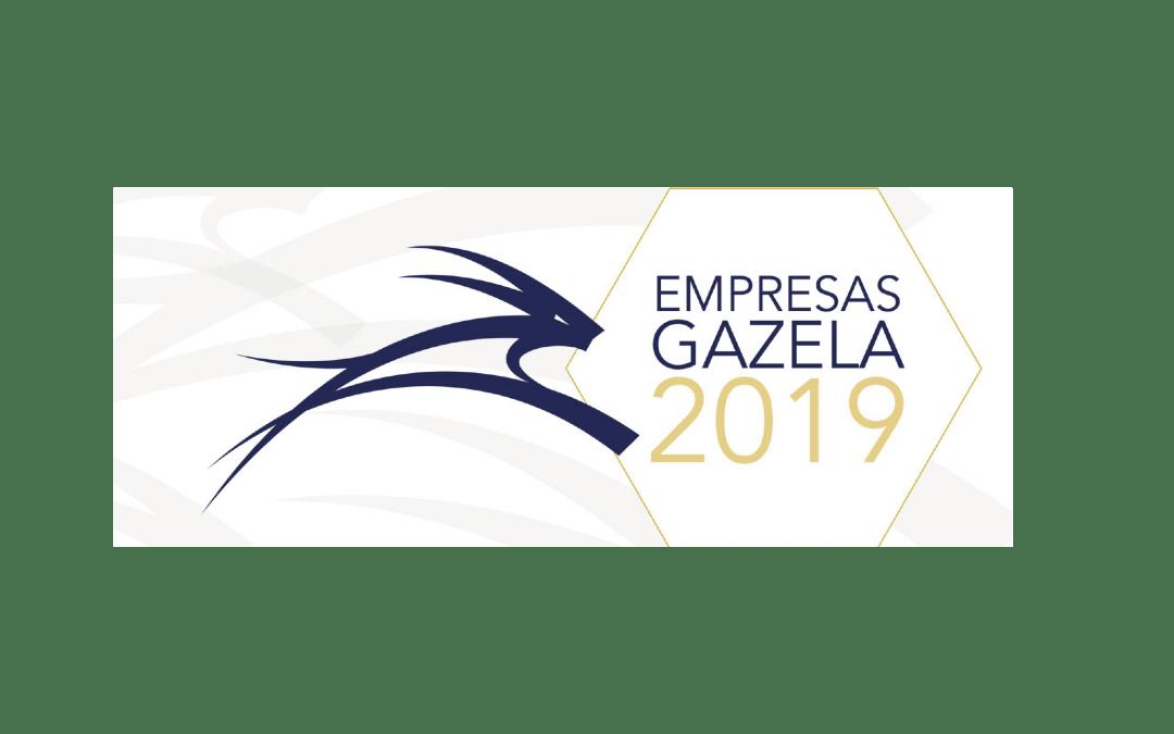 Empresa Gazela 2019